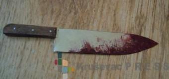 Krvava bajka u Obrežu: Braneći oca izbo nasilnika!