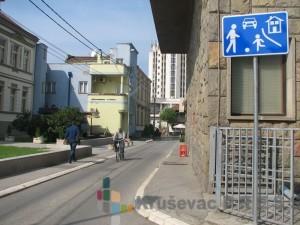 Znak koji obeležava zonu usporenog saobraćaja
