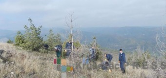 Pošumljavanje Koznice u spomen na srpske ratnike