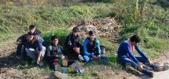 Izbeglice iz Avganistana u Stalaćkoj klisuri