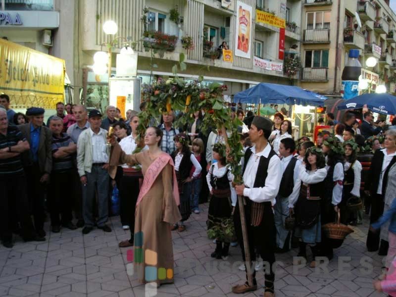 Okružno takmičenje sela u Plešu