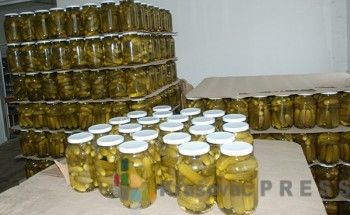 """U """"Dolini Morave"""" planiraju da dogodine prodaju milion tegli kornišona FOTO: S.Babović"""