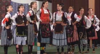 Takmičenje sela je održano u župskom selu Pleš
