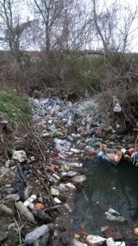 Vodu iz reke žitelji Vratara koriste za polivanje pooljoprivrednih useva FOTO: D. Antić