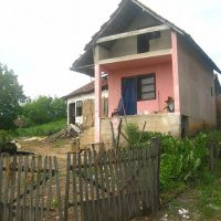 Radica živi u kućici koju se sagradila sa pokojnim suprugom FOTO: S. Babović