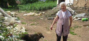 Usamljene starce čuvaju psi