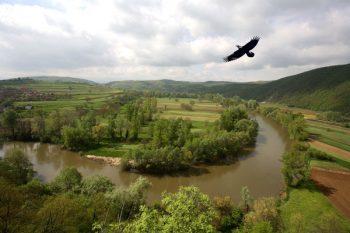 U Ćićevcu veruju da budućnost opštine u razvoju turizma FOTO: S. Milenković