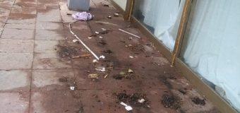 Sramota Kruševljana: terasu hotela koriste kao nužnik!