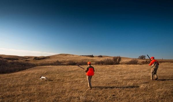 Pronađen leš u polju između Izbenice i Obreža