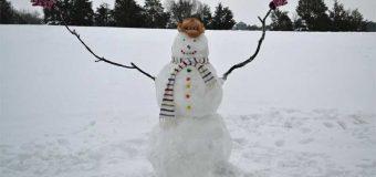 Sneško za Ginisa u Aleksandrovcu