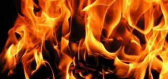 Tri radnika povređena u požaru u Trajalu