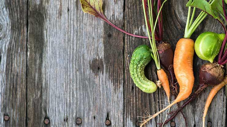 EVROPSKA UNIJA U MOJOJ ULICI: Proizvođači hrane odgovorni za svoje proizvode